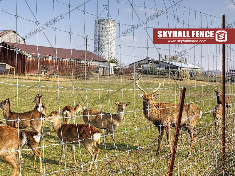 How To Buy A Agriculture Fence On A Shoestring Budget