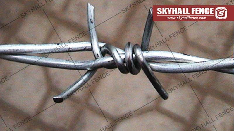310 Barbed Wire